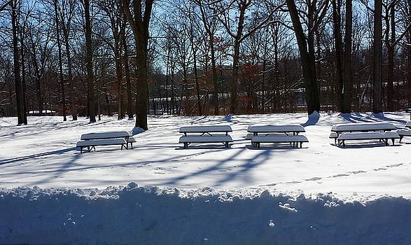 Picnic Tables Waiting by Susan Wyman