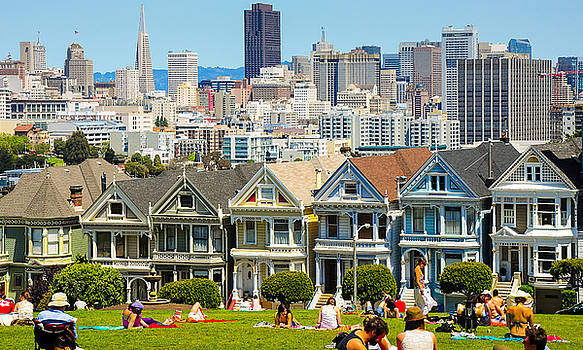 Picnic with the Painted Ladies by Srikanth Srinivasan