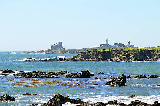 Art Block Collections - Piedras Blancas Lighthouse