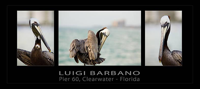 Pier 60 number 1 by Luigi Barbano BARBANO LLC