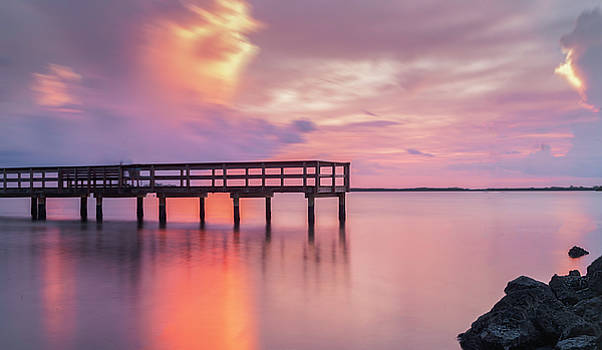Pier at Dunedin by Todd Rogers