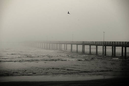 Pier In Fog by Bud Simpson