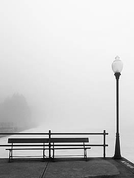 Pier in Fog, Early Spring by Brooke T Ryan