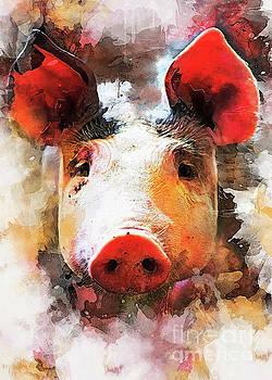 Pig art by Justyna JBJart