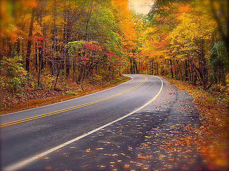 Pig Trail Autumn Scenic Road by Carolyn Wright