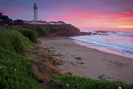 Pigeon Point Lighthouse by Adonis Villanueva