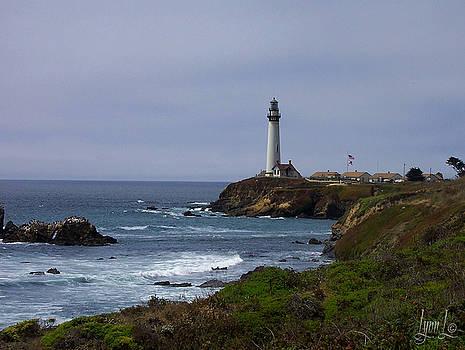 Pigeon Point Lighthouse by S Lynn Lehman