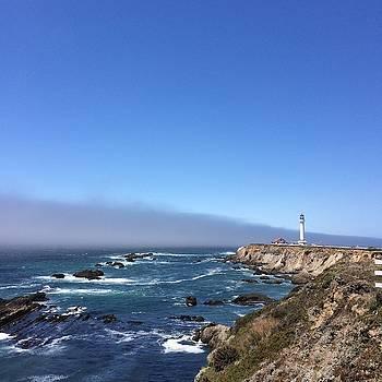 Pigeon Point Lighthouse by William Sullivan