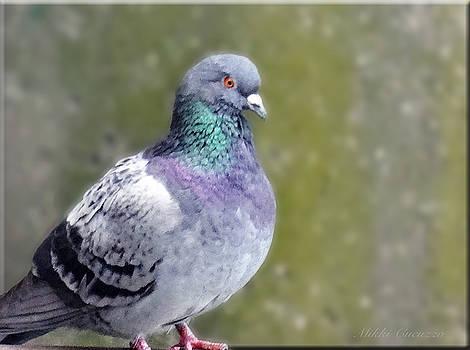 Pigeon Portrait by Mikki Cucuzzo