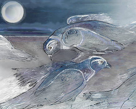 Pigeons Grey by Lydia L Kramer