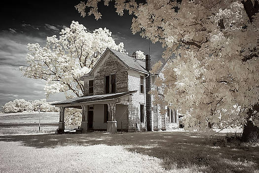 Pike County Infrared by Notley Hawkins