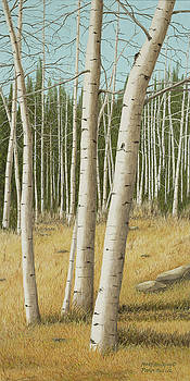 Pike's Peak Aspens by Mary Ann King