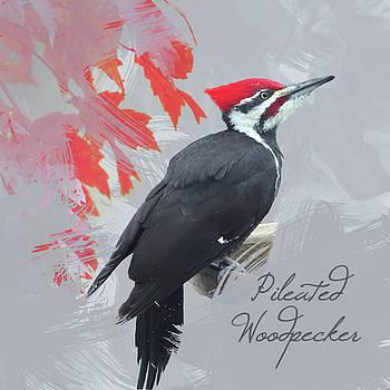 Pileated Woodpecker Watercolor Photo by Heidi Hermes