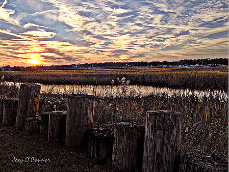 Pilings Inlet Sunset by Joey OConnor