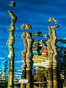 Pilings - Inverted by George Salter