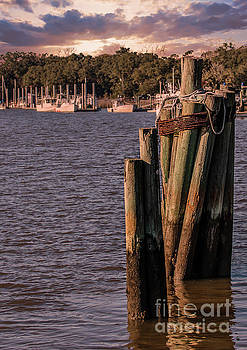 Dale Powell - Pilings on Jeremy Creek in McCellanville SC