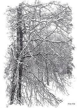 Kathy Kelly - Pin Oak in Snow