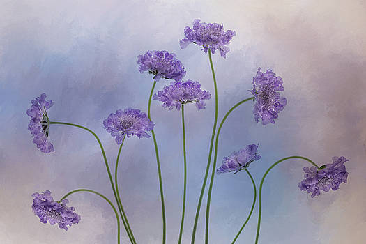 Pincushion #3 by Rebecca Cozart