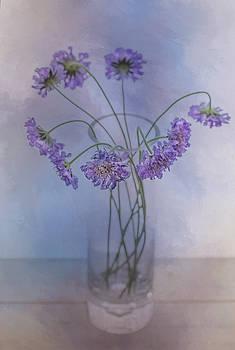 Pincushion #5 by Rebecca Cozart