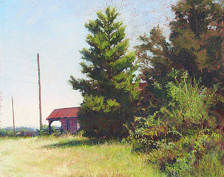 Pine and Old Stable by Marsha Savage