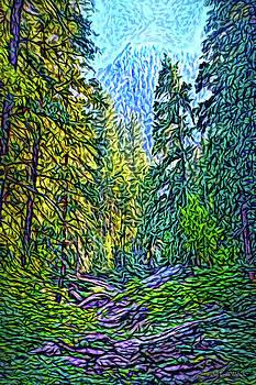 Pine Canyon Dreams by Joel Bruce Wallach