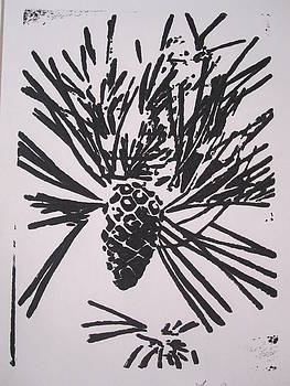 Pine cone by Tara Bennett