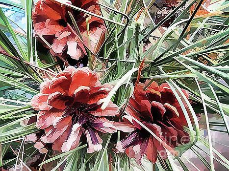 Pine Cones by Judy Palkimas