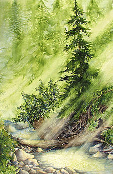 Pine Creek by Connie Williams