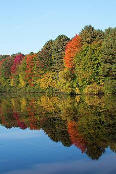 Karol Livote - Pine Lake In The Autumn