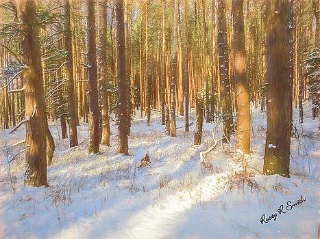 Pine stand in soft late afternoon sunlight. by Rusty R Smith