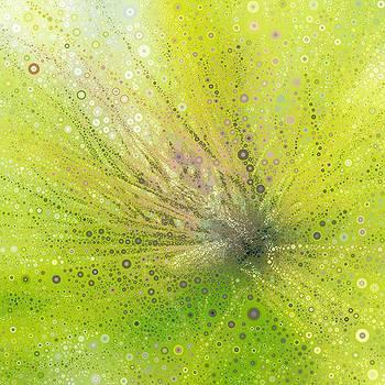 Pine Tree Buds Bubbles By Tammy by Tammy Finnegan