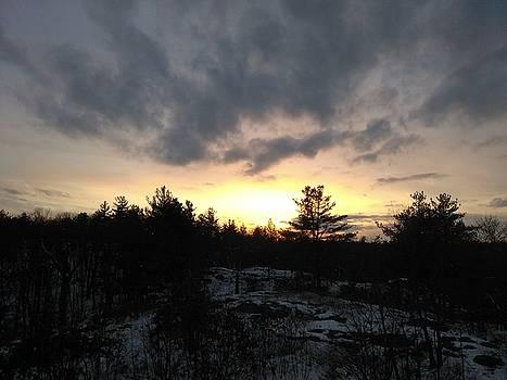 Pine Tree Sunset by Robert Nickologianis