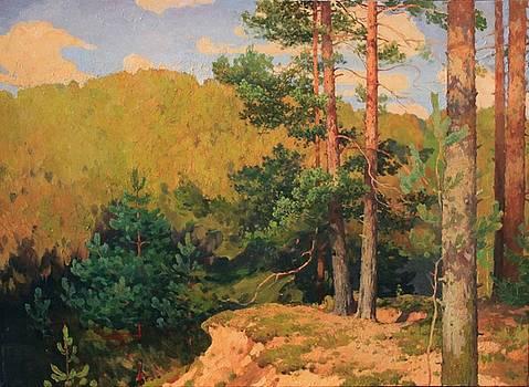 Pine-trees by Anna Ankudinova