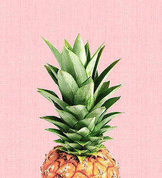 Pineapple and pink by Vitor Costa