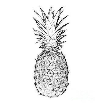 Pineapple Black And White by Jennifer Capo