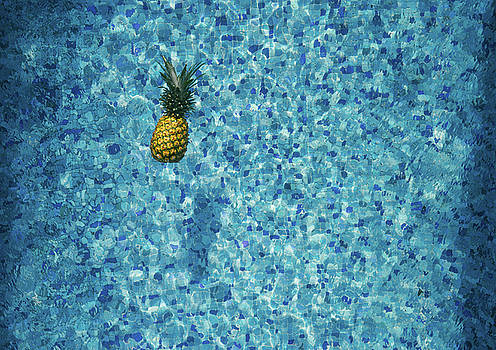 Pineapple Supply Co - Pineapple in Pool