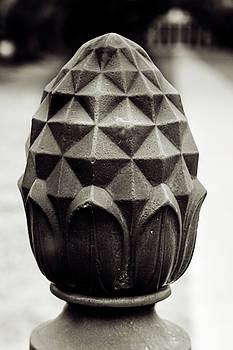 Chris Coffee - Pineapple, Oak Alley, Vacherie, Louisiana