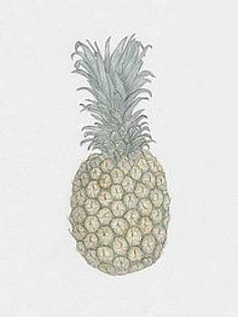 Pineapple by Tara Poole