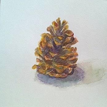 Pinecone by Thom Duffy