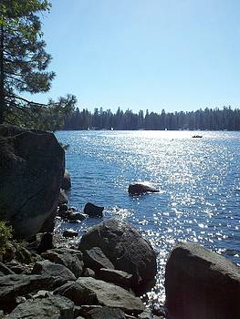 Pinecrest Lake by Brooke Finley