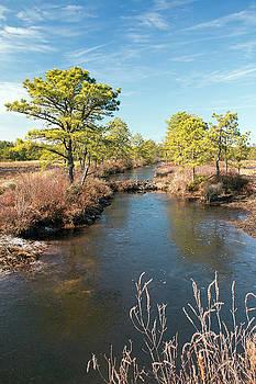 Kristia Adams - Pinelands Water Way