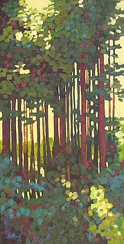 Pines of Nisqually by Mary McInnis
