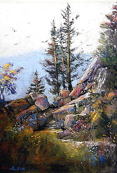 Pines on a Cliff by Tom Christopher