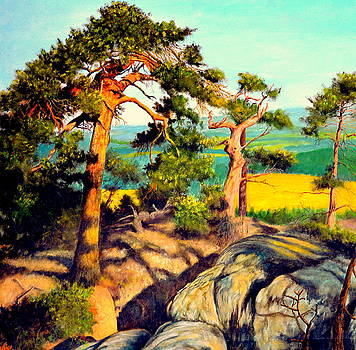 Pines on the rocks by Henryk Gorecki