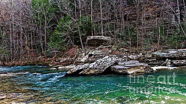 Paul Mashburn - Piney River Tennessee