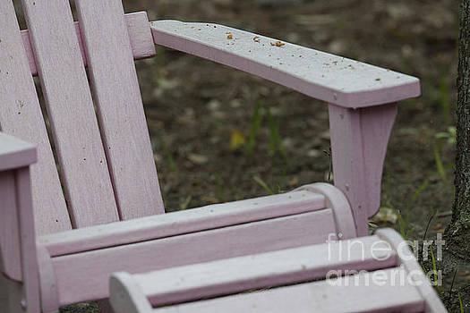 Dale Powell - Pink Adirondack