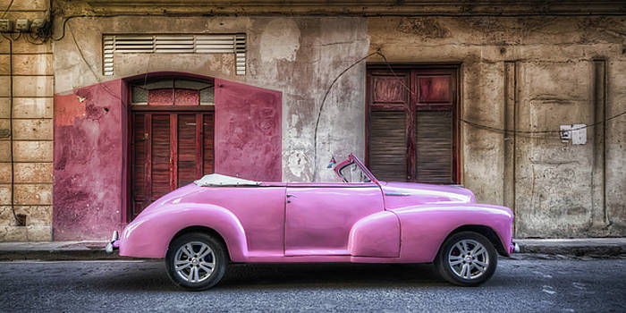 Pink by Alessandro Ciabini