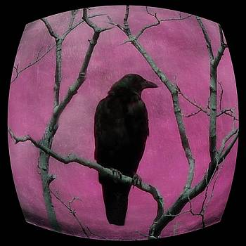 Pink And Black Crow Art by Gothicrow Images