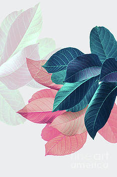 Pink and Blue Leaves by PrintsProject