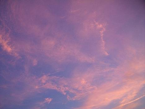 Pink and Blue Sky by LDPhotography Stephanie Armstrong
